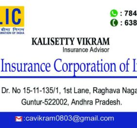 LIC Insurance Agent
