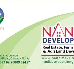 Real Estate Consulte...