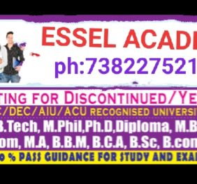 ESSEL CONSULTANTS