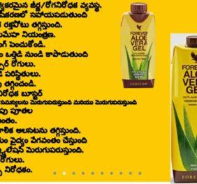 Sri Ramalingeswara O...