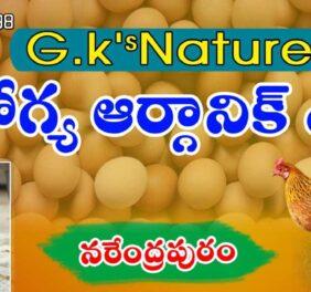 Arogya organic eggs